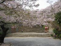 Tuyama__003